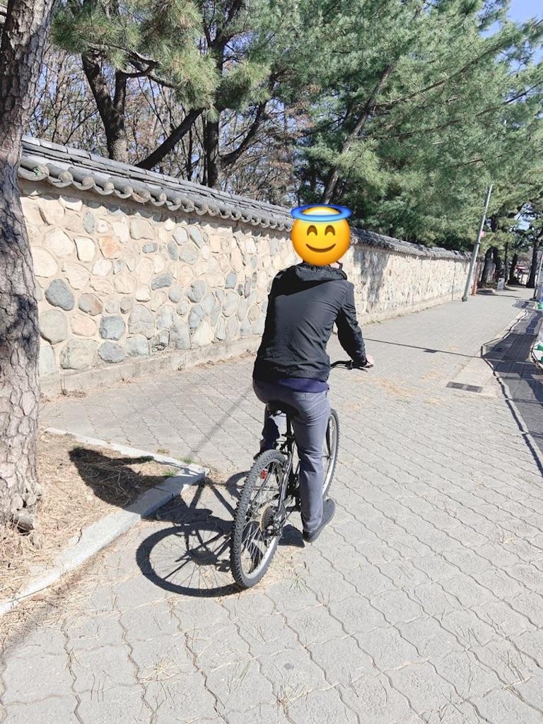f:id:tommy-korea:20210110173836j:image
