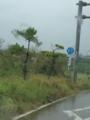 沖縄県道87号富野大川線