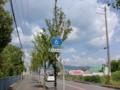 大阪府道・京都府道6号枚方亀岡線