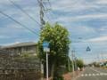 福岡県道401号宗像若宮線