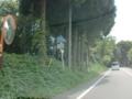 熊本県道316号住吉熊本線
