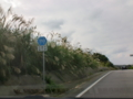沖縄県道110号線