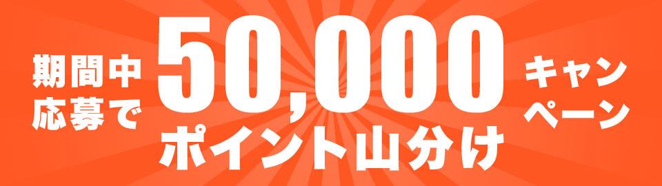応募者「5万ポイント山分け」キャンペーン