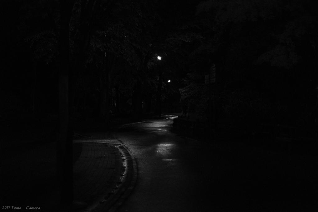 f:id:tomo-camera:20170514174200j:plain