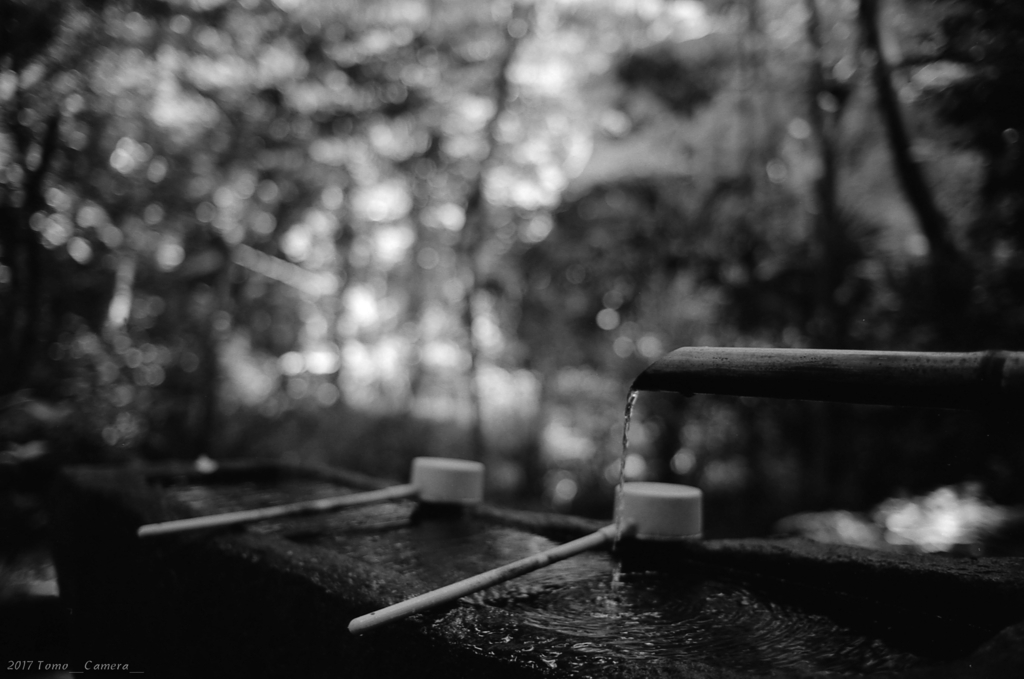 f:id:tomo-camera:20170731132551j:plain