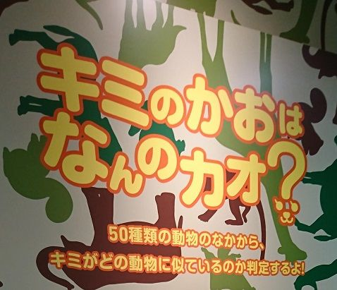 f:id:tomo-sankaku:20181107014127j:plain:w200