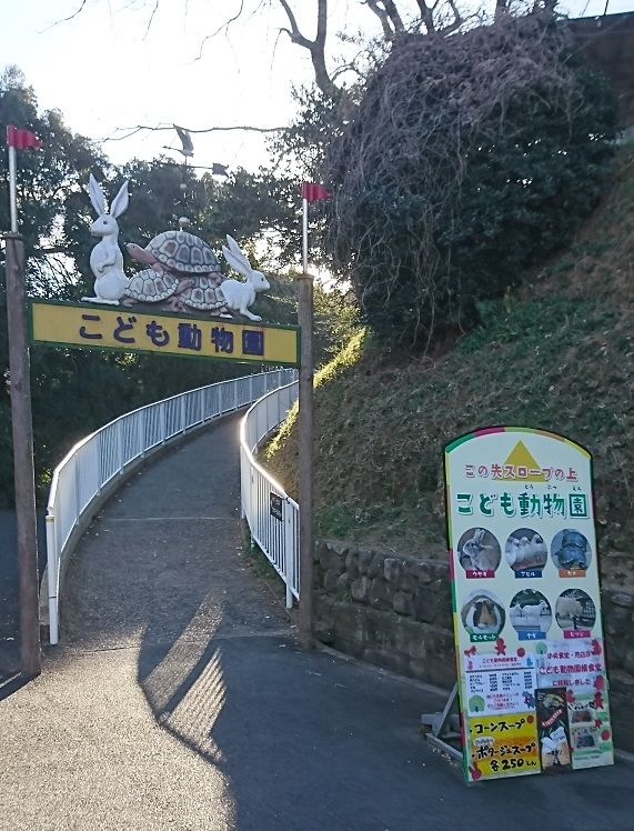 f:id:tomo-sankaku:20190105013444j:plain:w250