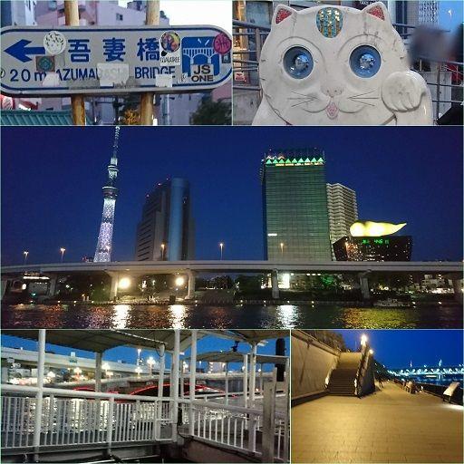 f:id:tomo-sankaku:20190510003057j:plain:w300