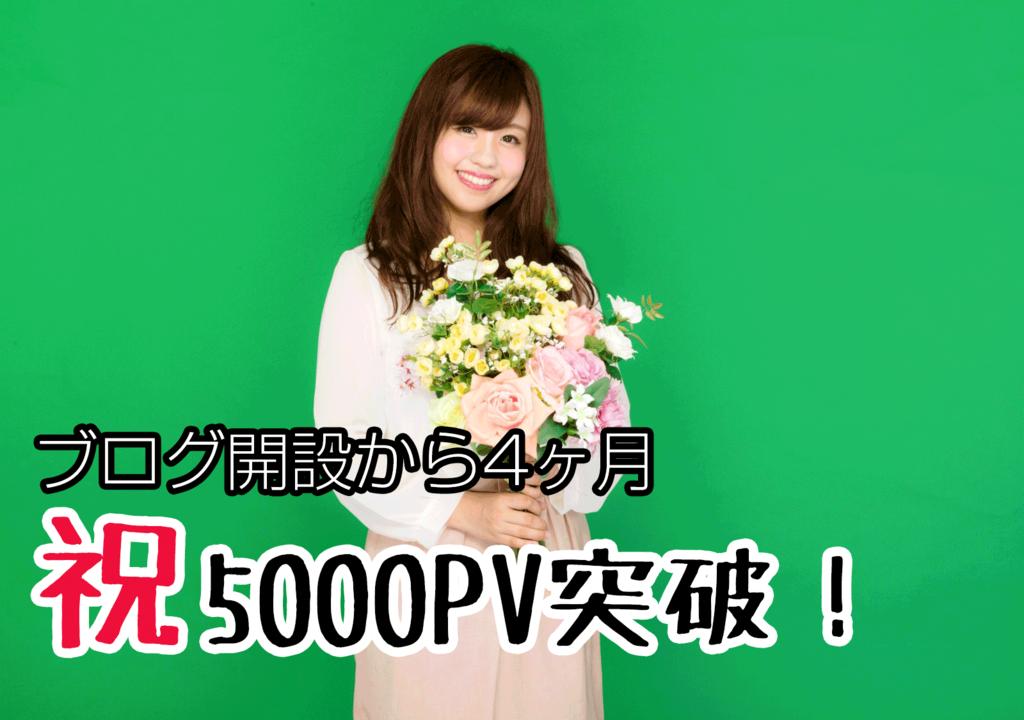 ブログ 初心者 5000pv