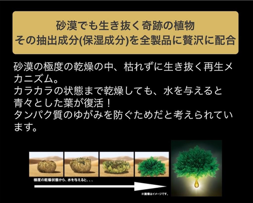 f:id:tomo_i0902:20190401213123j:image