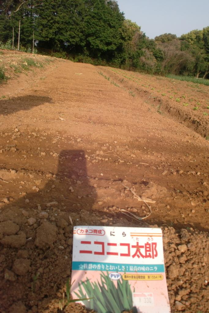 f:id:tomoaki-mikami:20180405202831j:plain