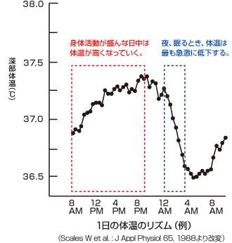 f:id:tomobataraki-system:20201106180209p:plain