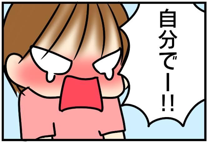f:id:tomobataraki-system:20201130182244j:plain