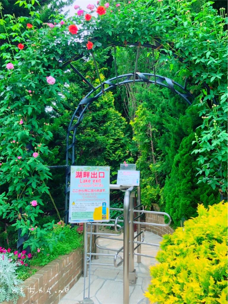 f:id:tomochan-me:20190614203306j:image