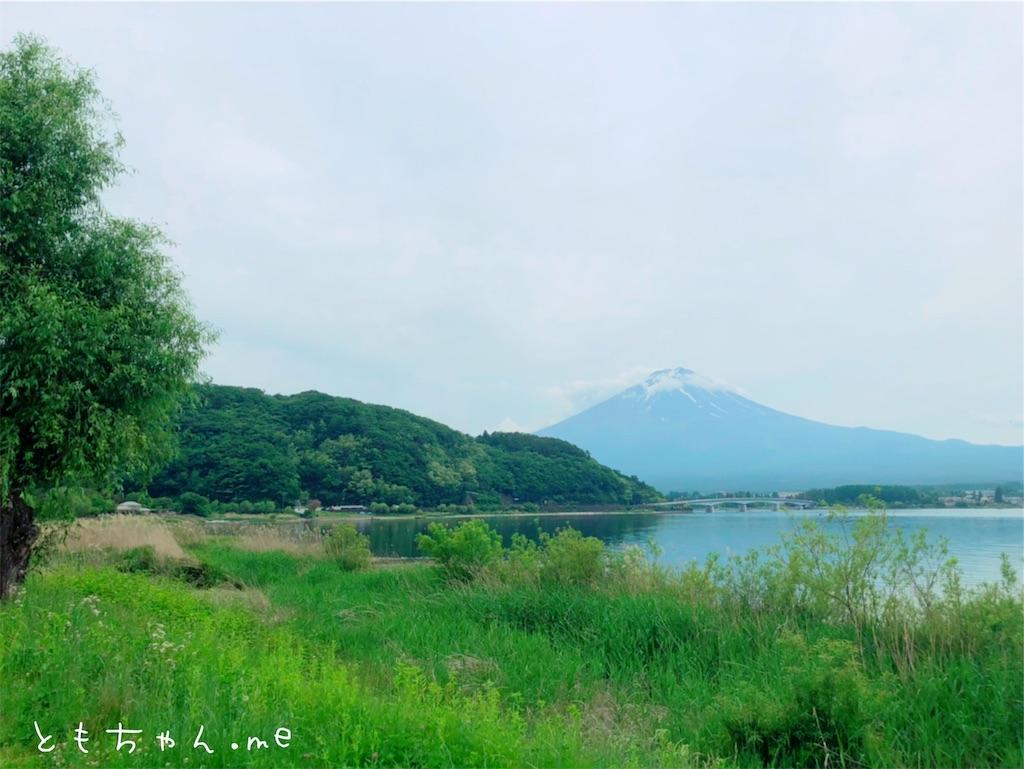 f:id:tomochan-me:20190614203310j:image