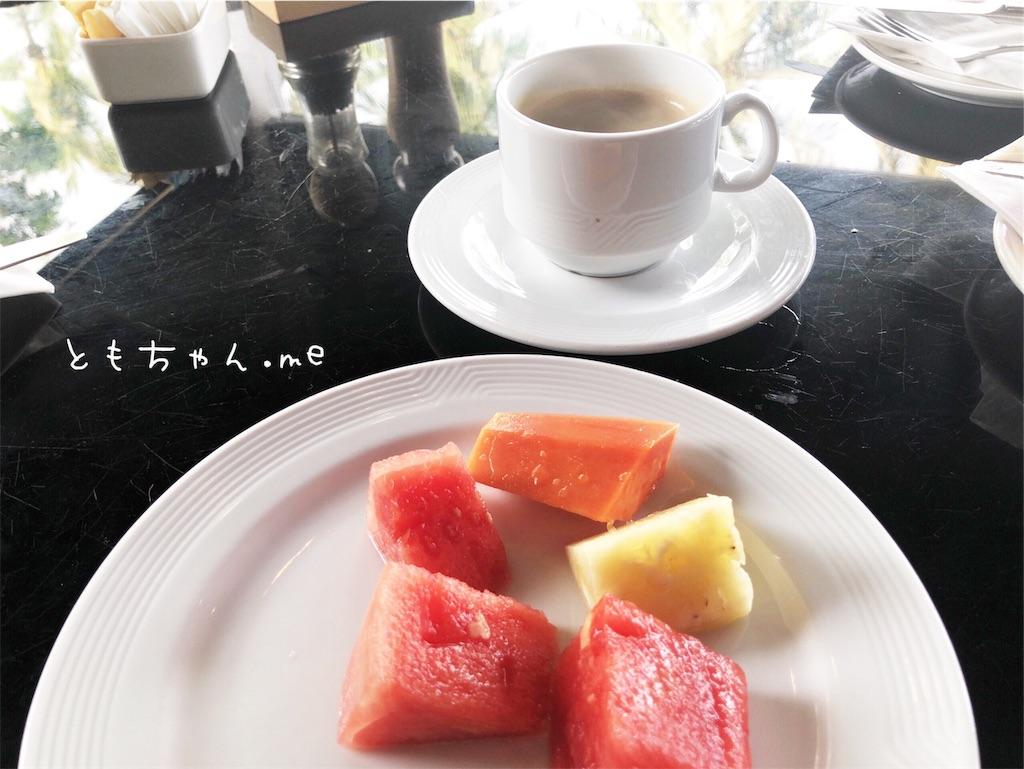 f:id:tomochan-me:20190709110244j:image