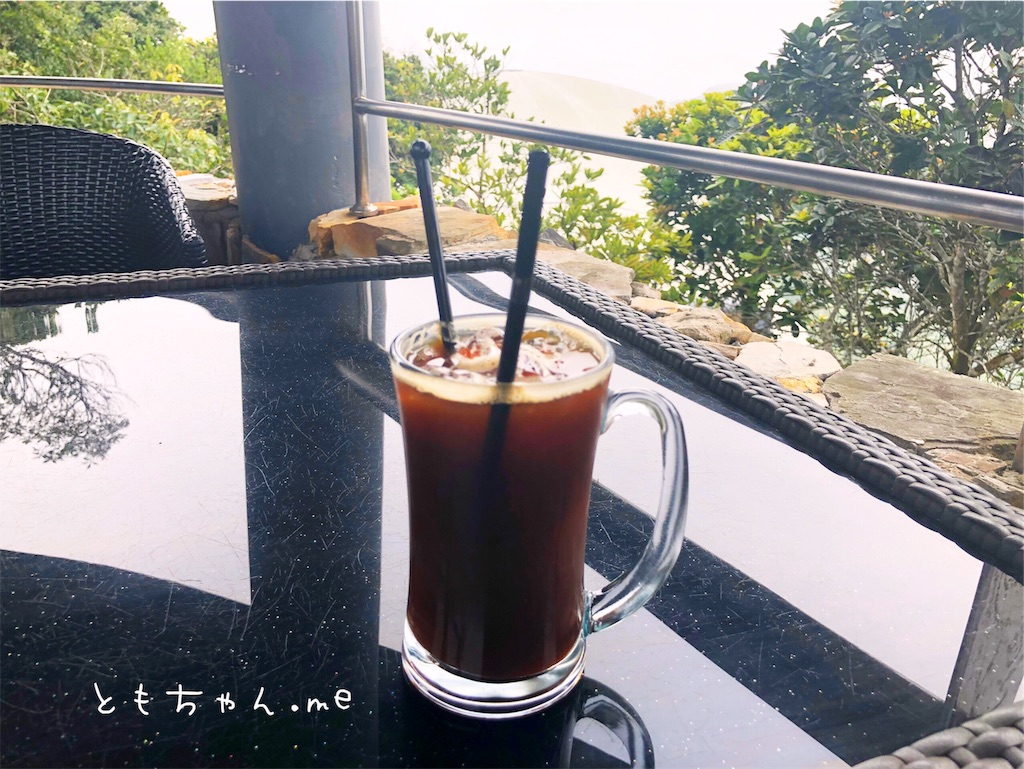 f:id:tomochan-me:20190710165612j:image