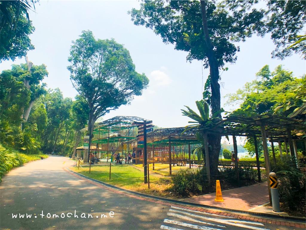 f:id:tomochan-me:20191017154734j:image