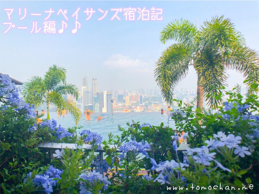 f:id:tomochan-me:20191103171407j:image