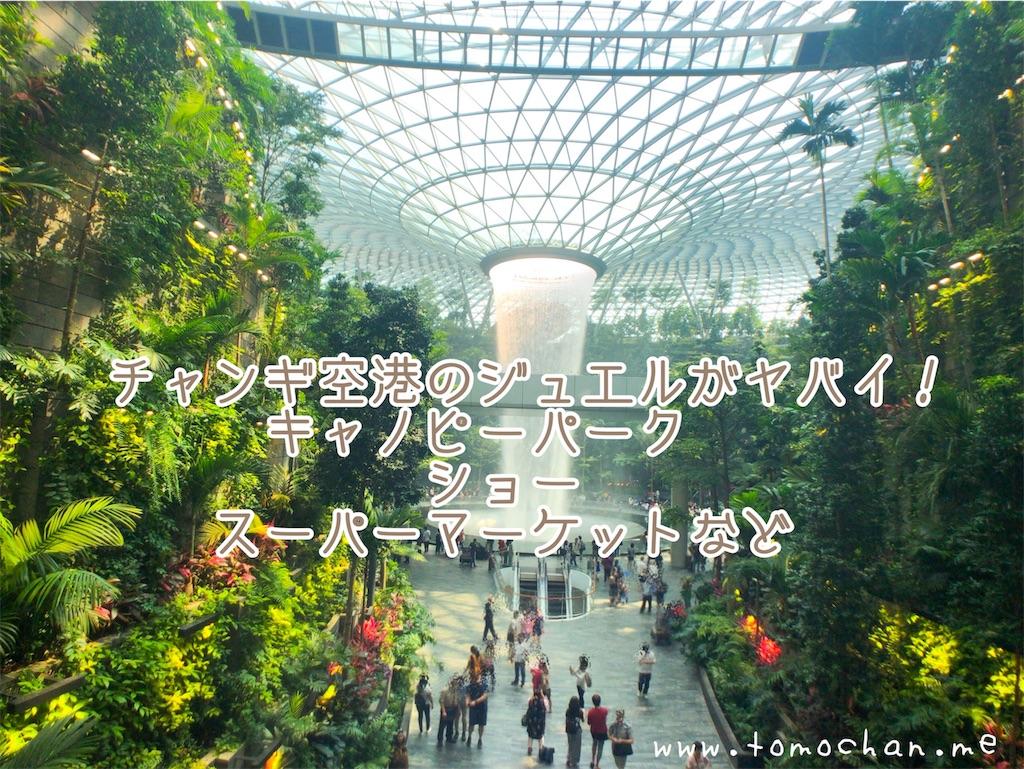 f:id:tomochan-me:20191110132752j:image