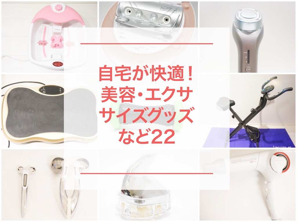 f:id:tomochan-me:20200331231234j:image