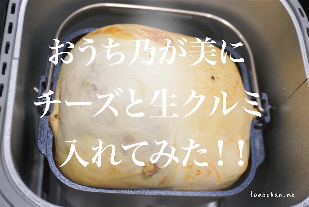 f:id:tomochan-me:20201019171238j:image