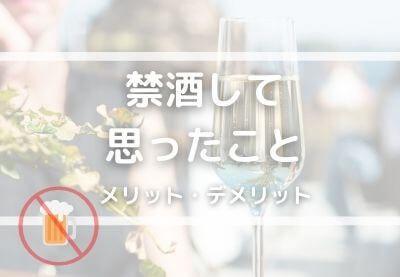 f:id:tomochan-me:20210210011634j:plain