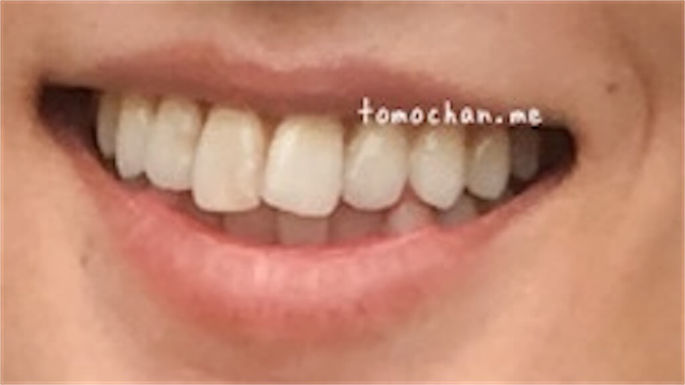 f:id:tomochan-me:20210210013221j:plain