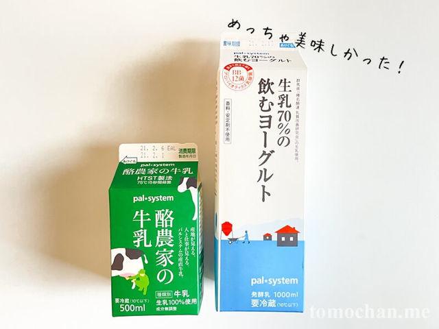 f:id:tomochan-me:20210302163326j:plain