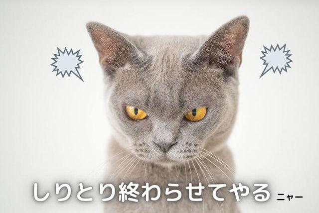 f:id:tomochan-me:20210304012603j:plain