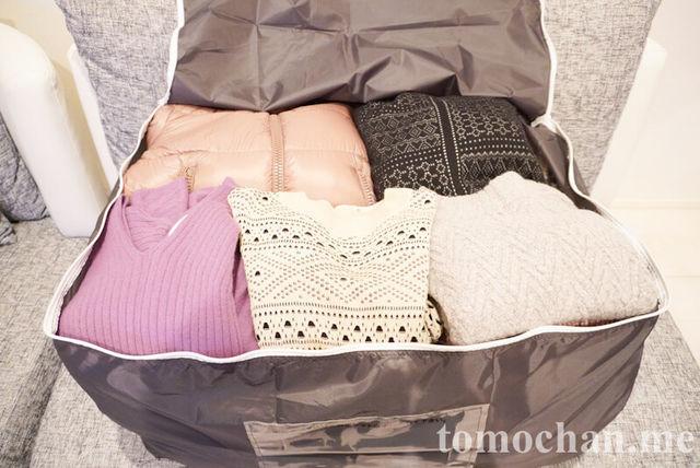 f:id:tomochan-me:20210317130040j:plain
