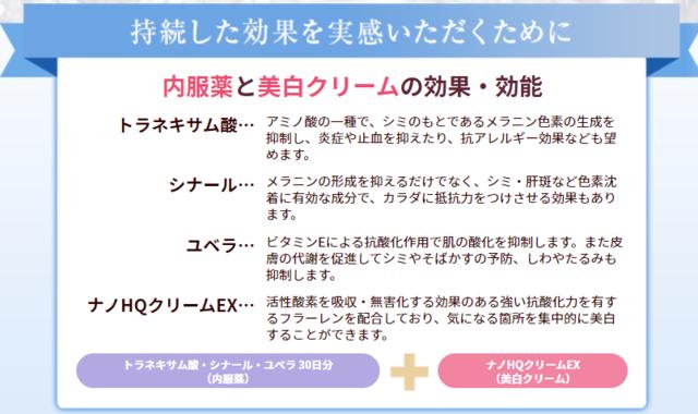 f:id:tomochan-me:20210321175312p:plain