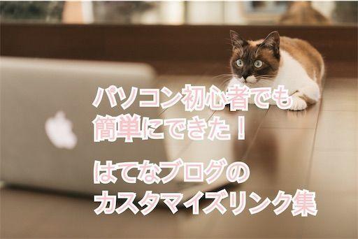 f:id:tomochan-me:20210427213227j:image