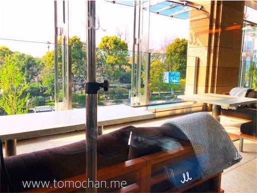 f:id:tomochan-me:20210428133632j:image
