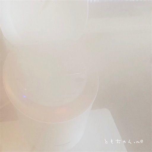 f:id:tomochan-me:20210428162327j:image