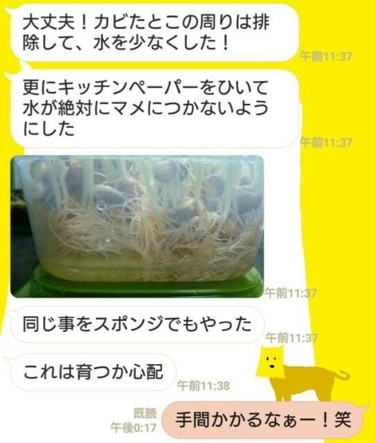 f:id:tomoharu74:20161225181131j:image