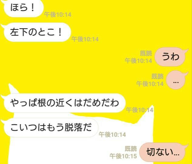 f:id:tomoharu74:20161225181257j:image