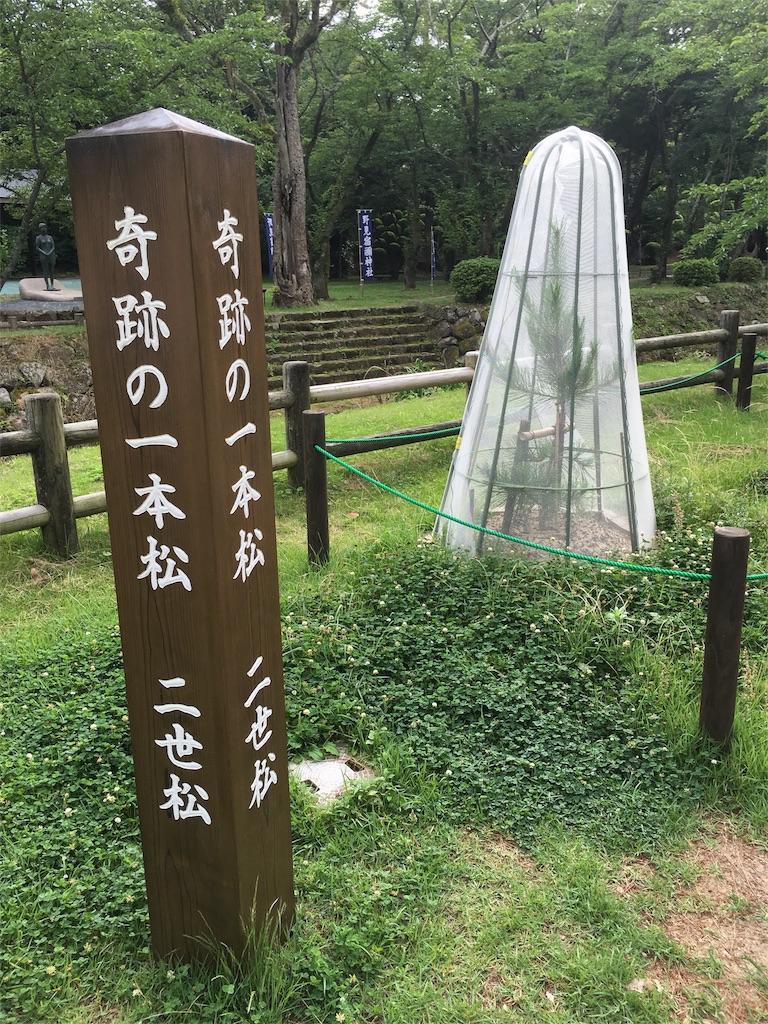 f:id:tomohiko37_i:20160703144143j:image