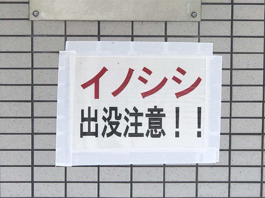 f:id:tomohiko37_i:20170528184805j:image