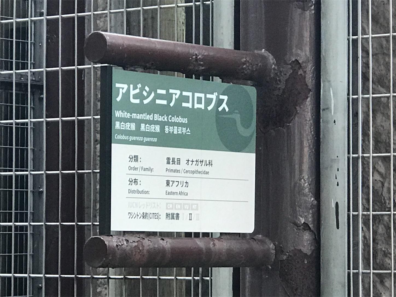 f:id:tomohiko37_i:20170819171428j:image