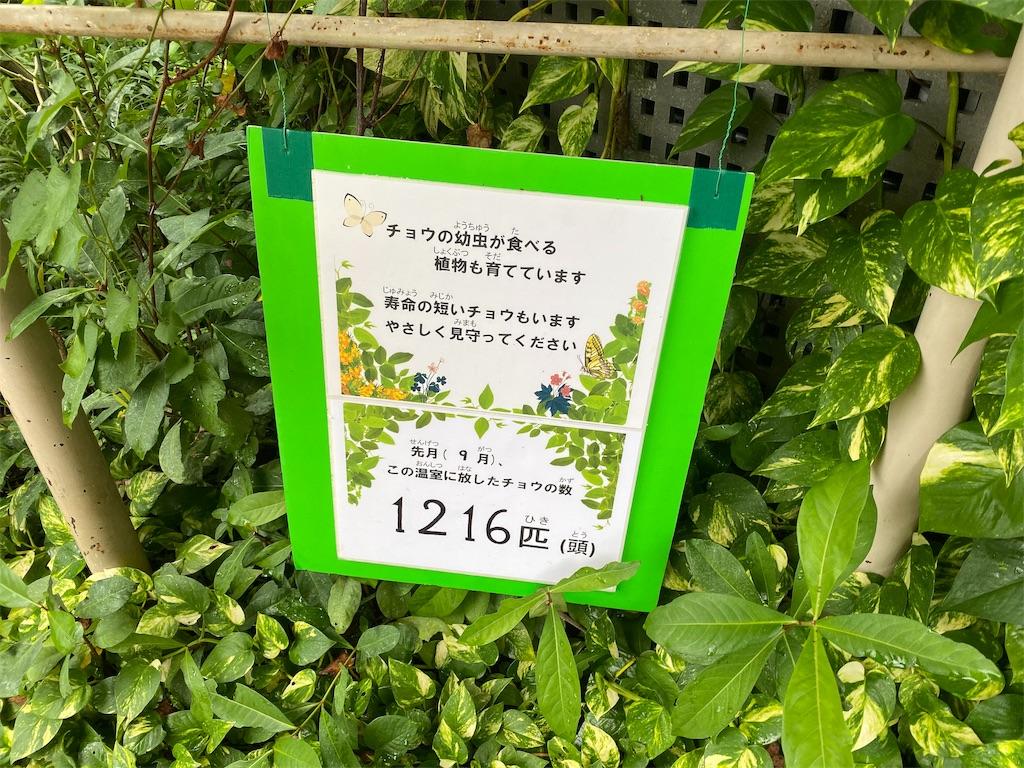 f:id:tomohiko37_i:20191021223012j:image