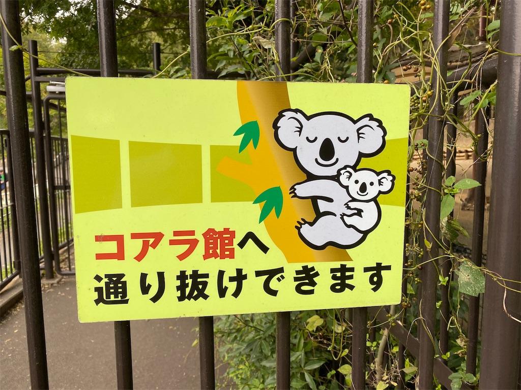 f:id:tomohiko37_i:20191025063318j:image