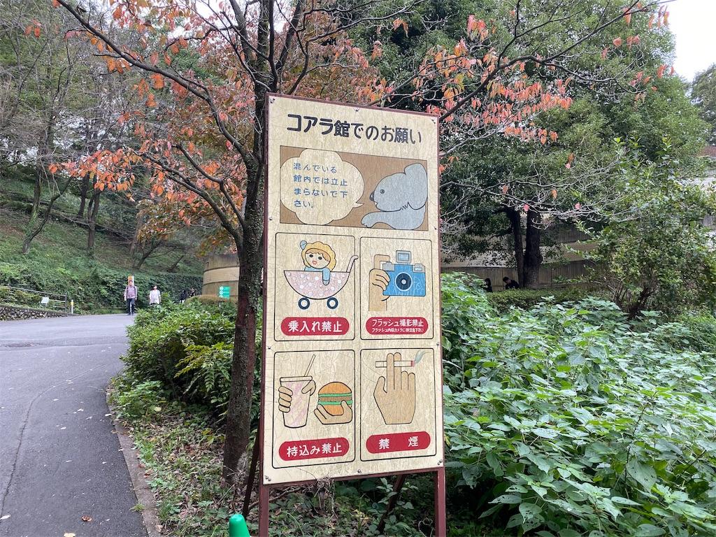 f:id:tomohiko37_i:20191026165833j:image