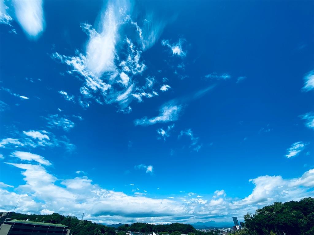 f:id:tomohiko37_i:20200511231638j:image