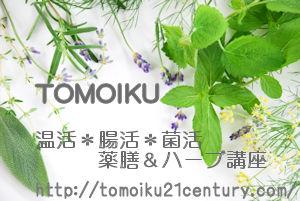 f:id:tomoiku21century:20170127024334j:plain