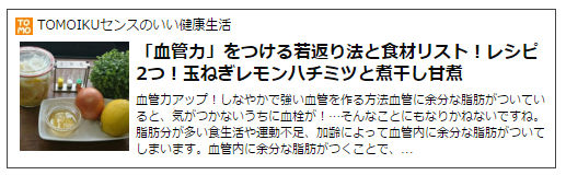 f:id:tomoiku21century:20170527191538j:plain