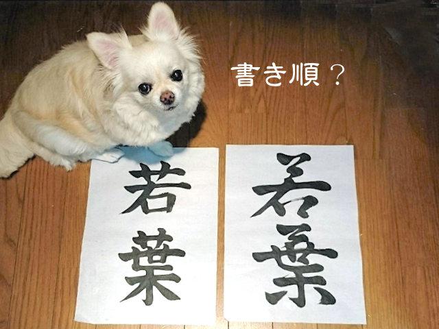 f:id:tomoiku21century:20170823020951j:plain