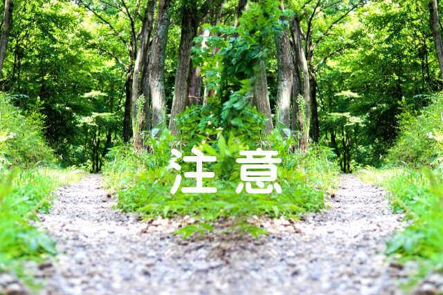f:id:tomoiku21century:20171215185428j:plain