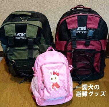 f:id:tomoiku21century:20180912185000j:plain