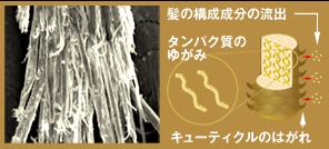 f:id:tomokiyohena:20170824130616p:plain